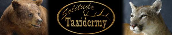 solitude-taxidermy